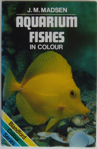 Image for Aquarium Fishes in Colour