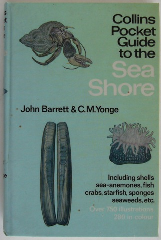 Image for Collins Pocket Guide to the Sea Shore