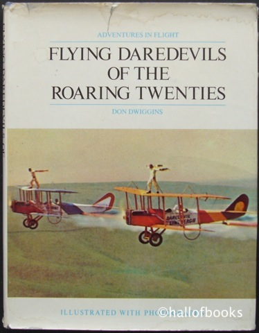 Image for Flying Daredevils of the Roaring Twenties