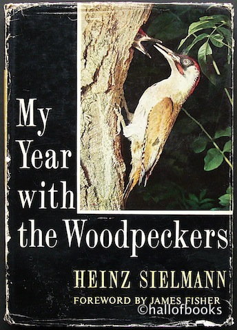 Image for My Year with the Woodpeckers