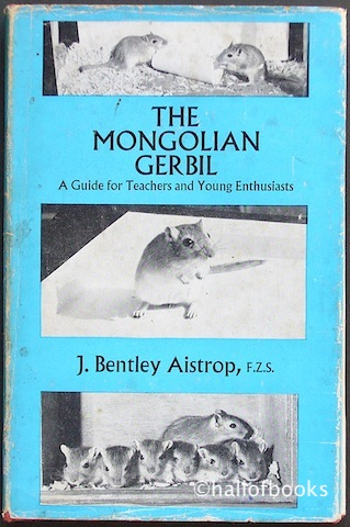 Image for The Mongolian Gerbil: A Guide for Teachesr and Young Enthusiats