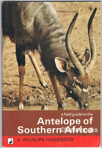 Image for A Field Guide to the Antelope of Southern Africa