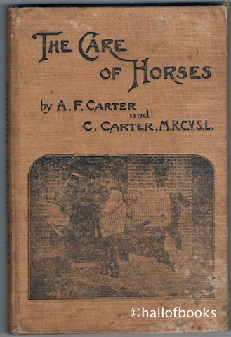 Image for The Care Of Horses: A Book for all who have Practical Charge of Horses