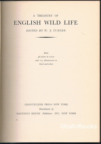 Image for A Treasury Of English Wild Life