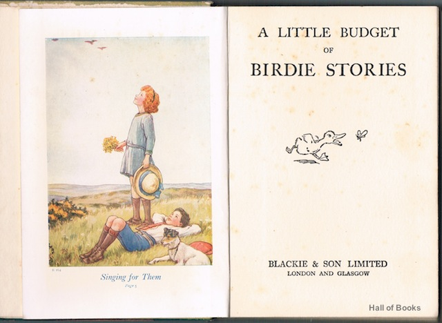 Image for A Little Budget Of Birdie Stories