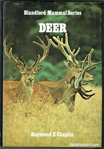 Image for Deer (Blandford Mammal Series)