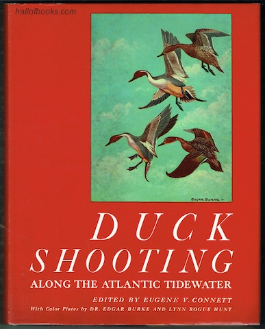 Image for Duck Shooting Along The Atlantic Tidewater