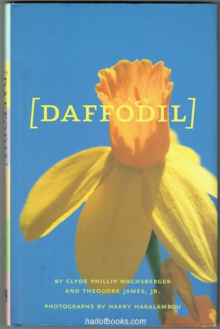 Image for Daffodil