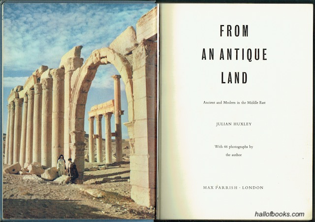 Image for From An Antique Land: Ancient And Modern In The Middle East