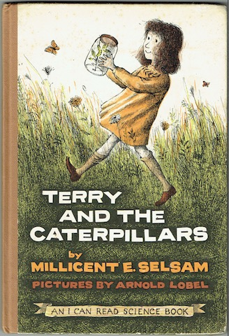 Image for Terry And The Caterpillars
