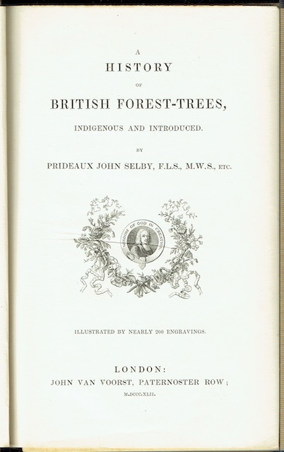 Image for A History Of British Forest-Trees, Indigenous And Introduced